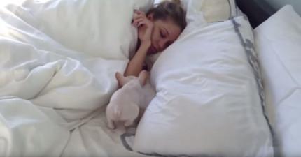 她想要領養的狗狗已經被人領養走了,但當有天起床時,那隻狗狗就出現在她眼前!