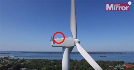 他讓無人機升空拍攝,沒想到在超高風力發電機頂端拍到...隔壁鄰居怎麼這麼瘋狂?!