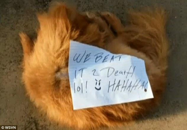 這家人的老狗外出失蹤一天,結果隔天他們卻看到這殘酷的事實外加一張會讓你氣到冒火的紙條...