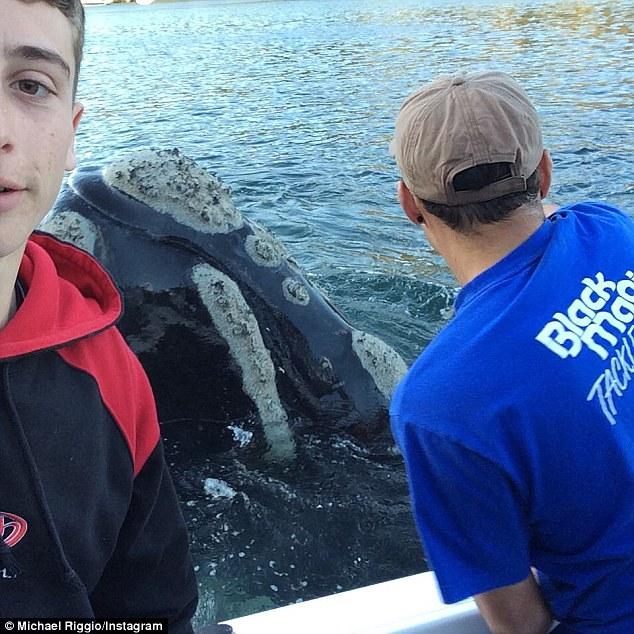 他們以為這隻鯨魚自己游向漁船是要討魚吃,但結果案情一點都不單純!
