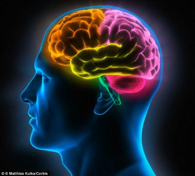 原來看A片對大腦的傷害這麼大!你在看的時候這就是你大腦中產生的嚴重副作用。