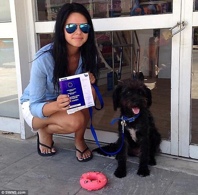 她飛了10000公里要帶回拯救她免於強暴的小黑流浪狗,結果找到她時發現到了更棒的驚喜!