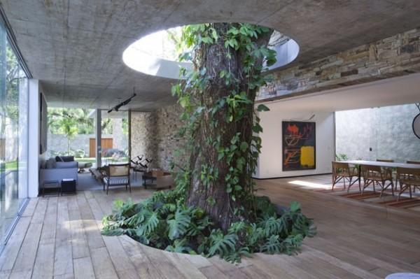 12棟「全人類都該學習」如何與自然和平共處的完美房屋。