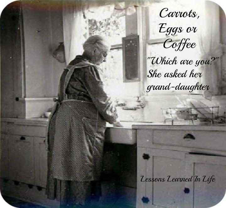 這位老奶奶只靠「紅蘿蔔、雞蛋、咖啡豆」,就能讓你重拾對人生的希望。