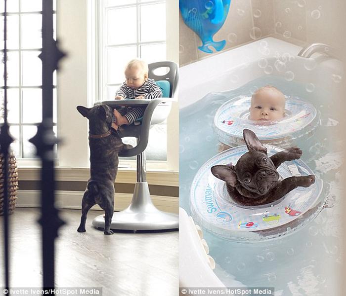 babydogbaths