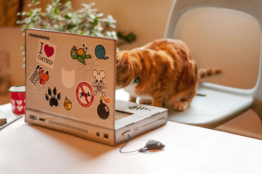 cat-scratch-laptop-toy-suckuk-5