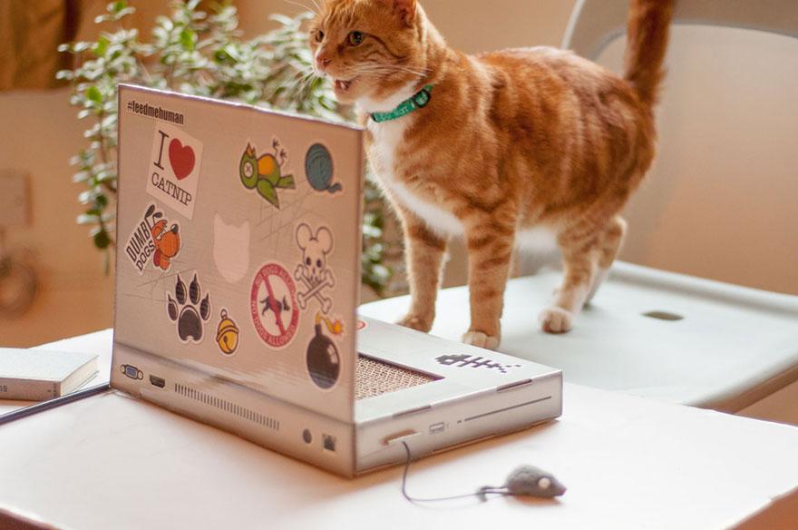 cat-scratch-laptop-toy-suckuk-7