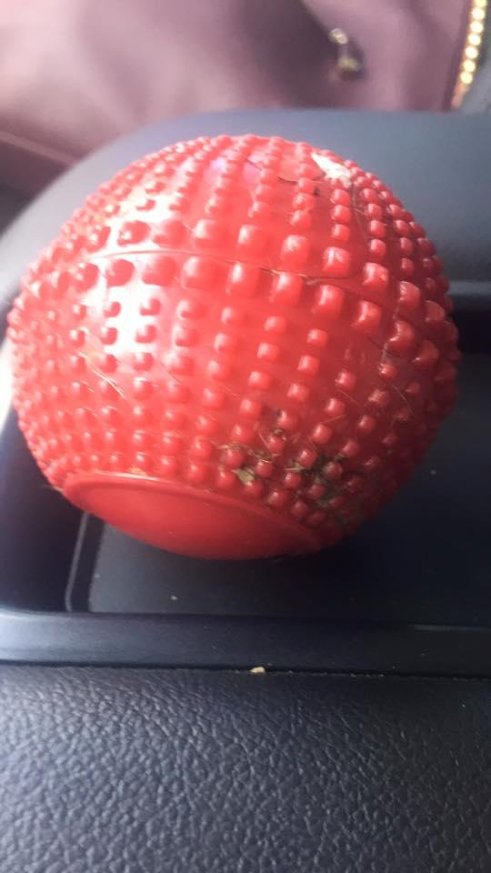 絕對不要給狗狗玩長得像這樣的玩具球,這隻狗狗就是因此而喪命的!