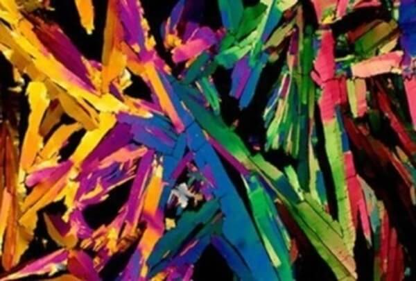 everyday objects under microscope 44