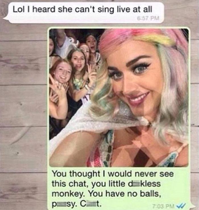 在凱蒂·佩芮的演唱會上,她拿了粉絲的手機上看到粉絲的前男友笑說她一點都不會唱歌,結果她的回復太棒了!
