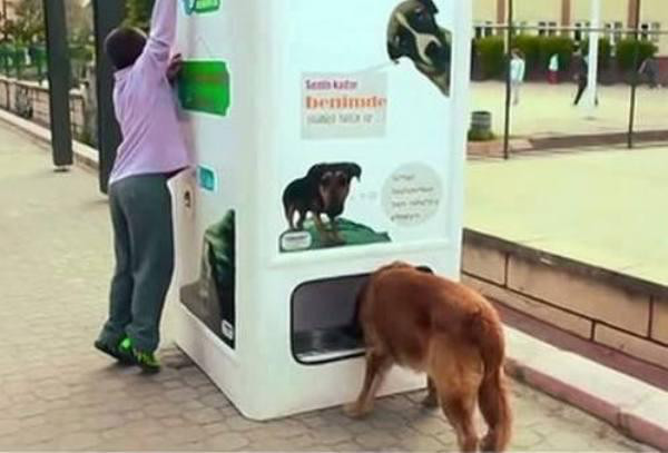 Dog food, Istanbul, Turkey Perhaps the coolest of them all, this vending machine dispenses food and water for stray dogs when people deposit recyclable bottles and cans.