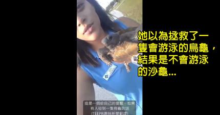 這個女生以為拯救了一隻烏龜很偉大,結果把不會游泳的沙龜丟到了水中...