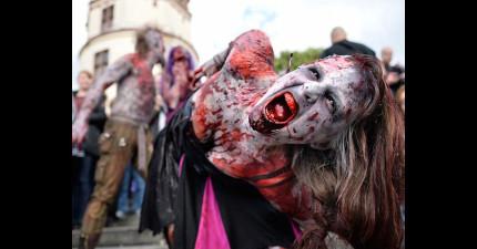 德國街頭突然出現了很多嗜血的恐怖喪屍,所有的居民都躲在家裡不敢出來!
