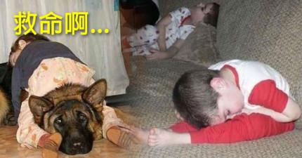 20個要教你怎麼睡得更好的「突破人類睡姿極限的液體小寶寶」。