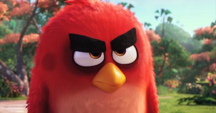 《憤怒鳥》電影預告終於出來了!壞蛋豬登場的橋段也太好笑了吧!