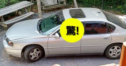 她只是出去一下子,沒想到一回來看到車裡的「劫車賊」是誰時整個快爆笑出來了!