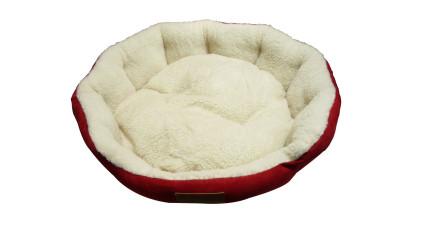 這個主人訂購狗床時忘記看尺寸,你看到狗狗的委屈表情就知道了...