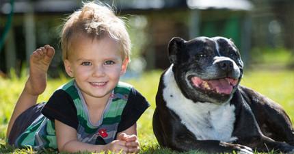 這個爸爸知道他們家的狗狗超討厭水,所以當他看到他全身濕答答的跑來找他時,他就知道事情嚴重了。