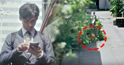 任天堂最新推出的《神奇寶貝APP》現在真的能讓你在真實世界裡用手抓《神奇寶貝》了!
