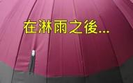 日本現在最火紅的「魔法雨傘」已經讓所有人天天都在期待下雨了!