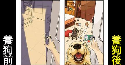 8張每個家裡有毛小孩的人會秒懂的「養狗前後」生活差異比對圖!