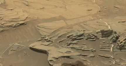 網友眼尖發現這張NASA火星探測車回傳的照片中很明顯的看到的一個「漂浮的湯匙」?!