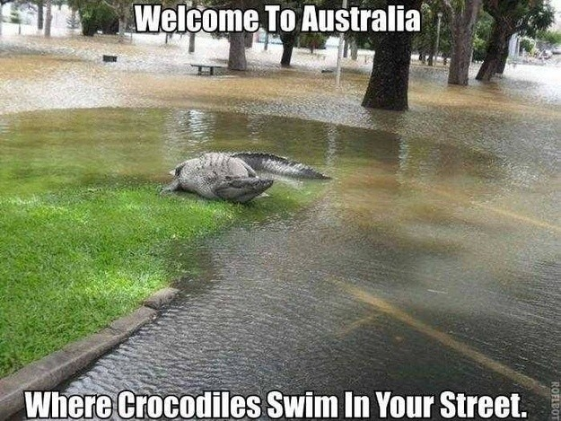17個理由告訴你為什麼沒有必死的決心千萬不要去澳洲。