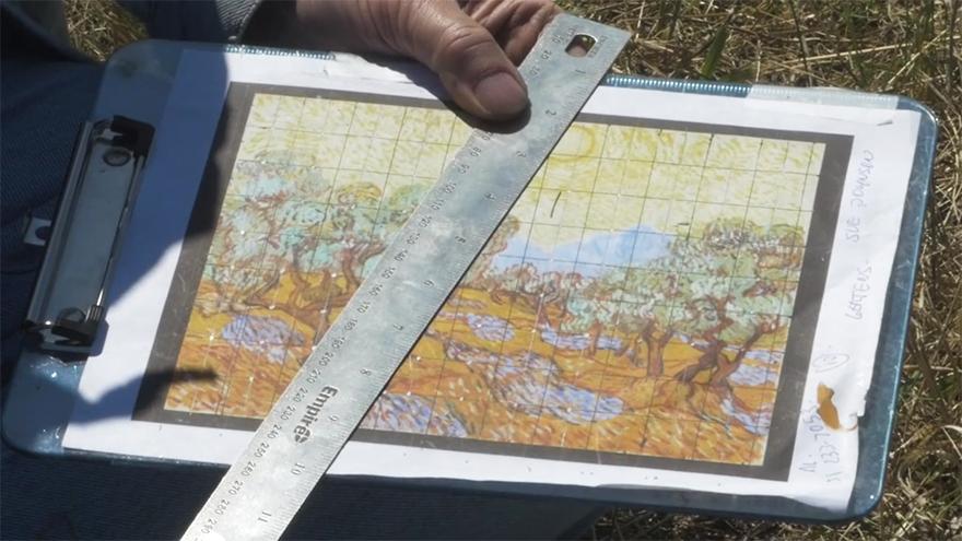 他在空地「種出」了一幅巨大梵谷名畫,完成品美到你會專程訂機票飛到上頭欣賞。