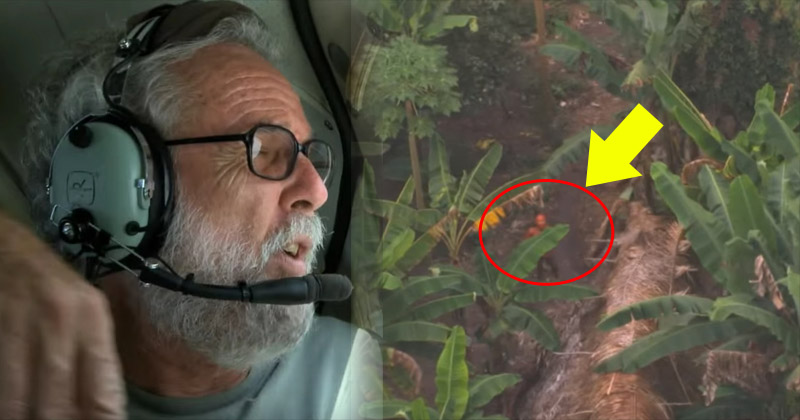 他望著飛機窗外希望能找到傳說中亞馬遜人的證據,他捕捉到的畫面讓政府都沒話說!