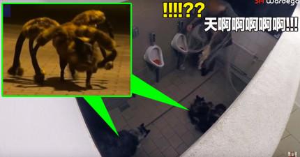 這位可憐男子上廁所時突然被蜘蛛絲包住,接著後方衝出了兩隻「巨型突變地獄蜘蛛狗」...