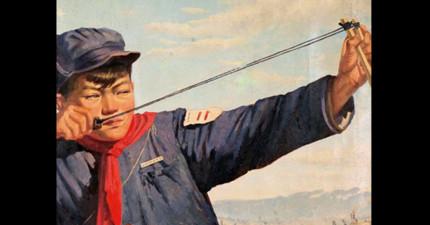 中國在1958年的時候發起了「消滅麻雀運動」,最後害死了2000多萬人。