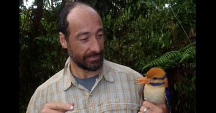 這名科學家找到了全世界最稀有的鳥類,結果立刻就把他給殺了。