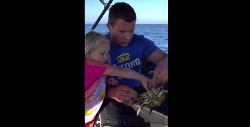 爸爸教女兒怎麼用手抓著螃蟹,結果女兒不小心放掉螃蟹正好讓螃蟹緊緊夾住爸爸的...