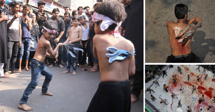 這會是你看過最瘋狂的穆斯林超血腥節慶,看到小男孩用刀刃鞭打自己讓我全身冒冷汗了。