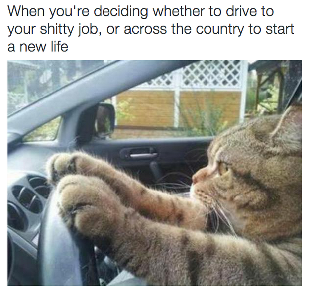 And making important decisions: