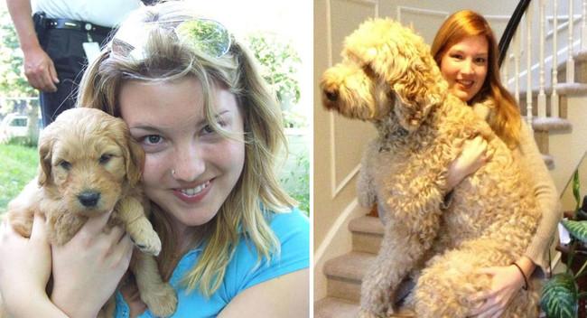 22隻教會你要更珍惜時間的狗狗長大前後比對照。