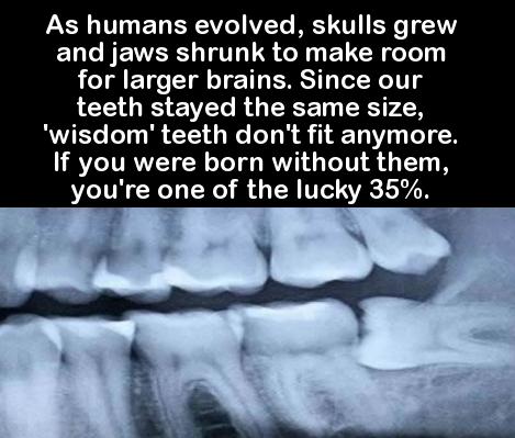 15個會幫你進化到下個等級的超天才小知識!
