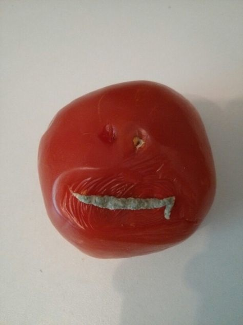 The tomato that actually just wants to eat you.