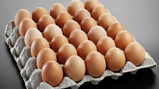 你有想過「為什麼我們吃的雞蛋裡面都沒有小雞嗎?」嗎?沒有,因為你只想到你自己。