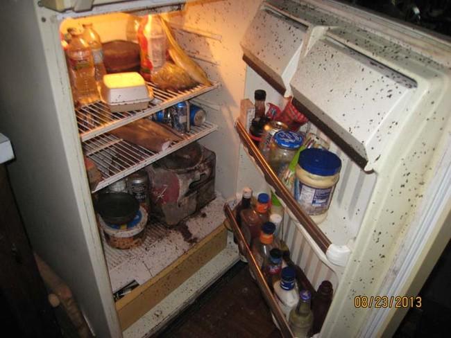 11個我猜你可能會看不完的「史上最噁爛冰箱精選」,你看得出#11原本是什麼水果嗎?