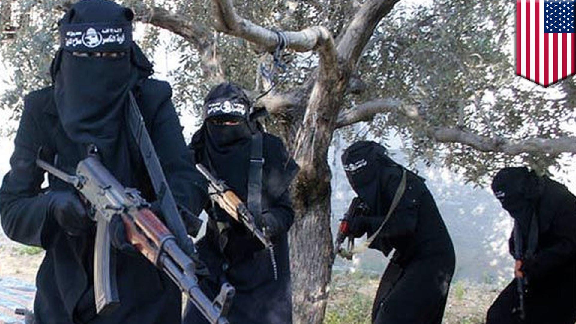這名CNN記者不小心脫口而出的,莫非就是「美國暗地裡幫助ISIS」的駭人證據?!
