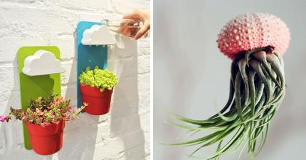 15個會讓你重新愛上你的辦公環境的園藝創意盆栽!