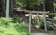 這座日本神社外觀雖然很普通但卻是世界知名觀光景點,因為裡面的「超不真實景象」真的太猛了...