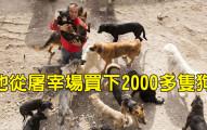 他原本是百萬富豪,但三年來「拯救2000多隻原本會被吃掉的狗」讓他窮到連狗糧都得用結婚基金買了。