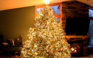 這棵聖誕樹看起來已經很美了,但「關燈後的動感效果」讓我願意整個聖誕節只看著這一棵!
