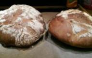 「用陰道做出的麵包」成品終於出爐了,看完她試吃後的感想讓人完全吃不下飯了...
