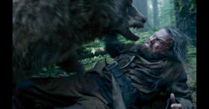 李奧納多被熊強暴2次!他為新片做的各種犧牲會讓你「佩服到直接趴下膜拜」。