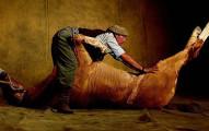 他買了一匹馬但隔天發現是一匹死馬但錢要不回來了,結果這匹死馬就給了他無限成就!