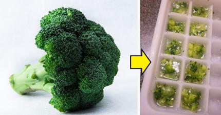 9種常見食材最有效「鎖住新鮮及營養的正確保存方法」,原來直接放進冰箱是最笨的做法!