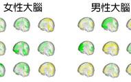 推翻所有研究發現原來「男人和女人的腦部根本沒有區別」,研究結果會推翻你的整個世界!